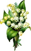 Lilyofthevalleyarrangement